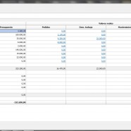 contrôle budgétaire